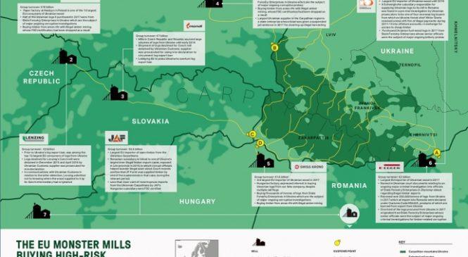 Дослідження: Україна експортує до ЄС незаконну деревину для постачальників Ikea і H&M