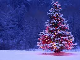 """Пов'язані фірми """"розіграли"""" 2,5 мільйонів на Новий рік і Різдво в Маріуполі"""