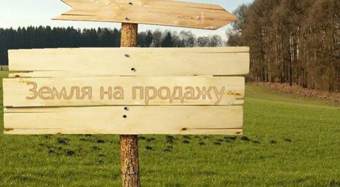Суд звільнив від покарання сільську голову, яка спочатку незаконно виділила, а потім продала 2 га землі